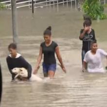 Crianças salvam cachorro durante enchente em São Paulo