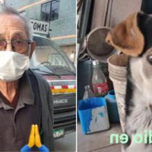 Idoso de 84 anos já caminhou centenas de quilômetros procurando seu cão perdido