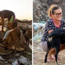 Todos os dias mulher vai ao lixão alimentar 40 animais abandonados