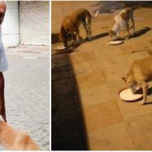 Homem de 70 anos acorda todos os dias de madrugada para fazer comida para cães de rua
