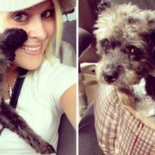Ela adotou um filhote de cachorro com câncer terminal e deu-lhe os melhores últimos dias