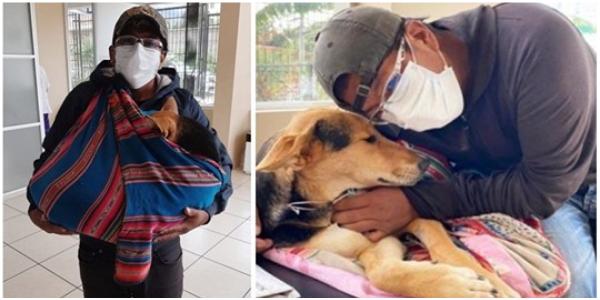 Homem percorre quilômetros com seu cachorro paralítico nos braços a procura de ajuda