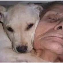Idosa acorda do coma após 30 dias e diz que seu cãozinho salvou sua vida