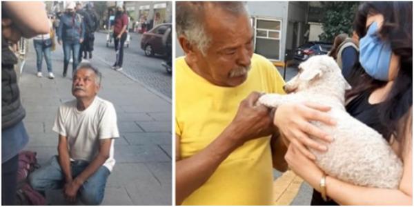 O cachorrinho do doce velhinho que vendia na rua aparece depois de dias chorando pelo amigo