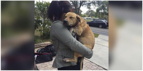 Cachorro assustado não para de abraçar as pessoas que a resgataram do lixo