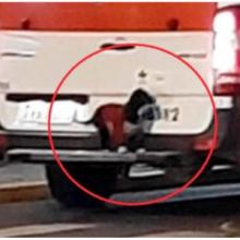 Cachorro sobe no para-choque de uma ambulância para acompanhar o dono ao hospital