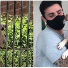 Cadelinha deixada para trás em casa abandonada é resgatada e ganha um novo lar.