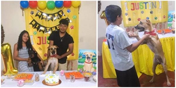 Família torna-se alvo de críticas após postar fotos de aniversário de seu cachorro