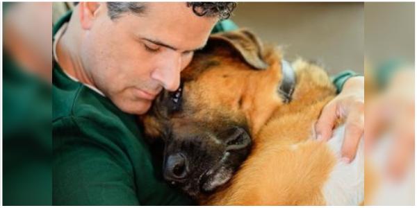 Apresentador de TV se despede de seu cachorro em lágrimas e comove a todos