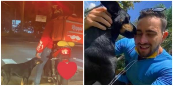 Cachorrinho se aproxima de Motoboy em semáforo e recebe o que tanto queria e não conseguia