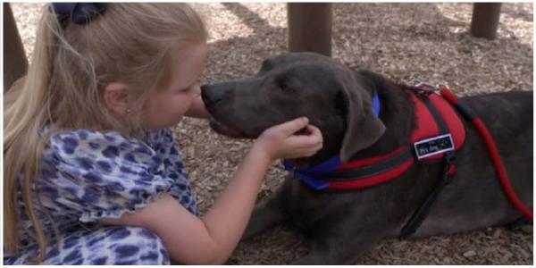 Cachorro conforta menina de 6 anos de luto no funeral de seu pai e emociona a todos