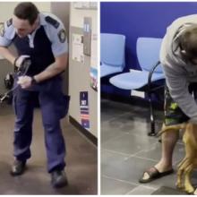 Cachorro se emociona ao se reunir com seu dono 2 dias depois de ser sequestrado