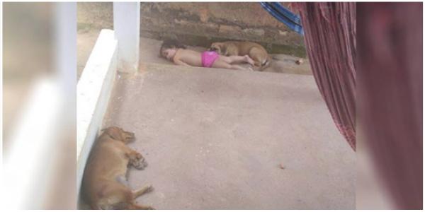 A família sente o silêncio e encontra a filha tirando uma soneca com o cachorro