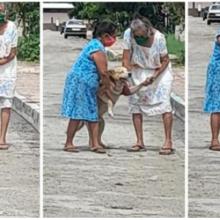 Momento imperdível em que as avós resgatam o cão que fugiu de casa