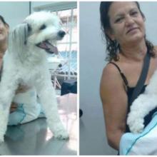 Mulher é criticada por cuidar de seu cachorro paralítico como se fosse filho