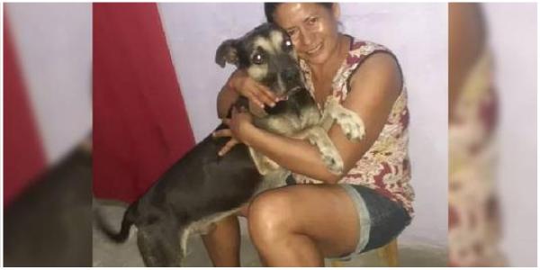 Cão que esperava antiga tutora viaja 4.000 km para reencontrá-la