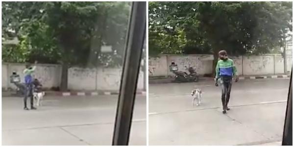 Homem para o trânsito para ajudar cachorro a atravessar avenida movimentada