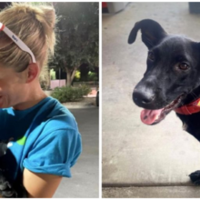 Jovem encontrou um cachorro abandonado em suas férias e o resgatou