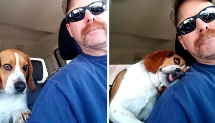 Homem resgata cachorro de ser sacrificado em um abrigo e ele agradece com um abraço