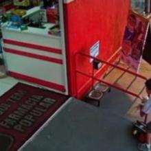Menino salva filhote de cachorro abandonado e o leva na mochila para alimentá-lo