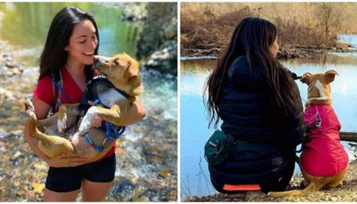 Mulher encontra um cachorrinho ferido abandonado em uma trilha, o adota e agora eles são inseparáveis