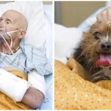 Veterano do hospício pede para ver seu cachorro uma última vez para se despedir